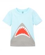 DP Bolur Shark, 18 mán image